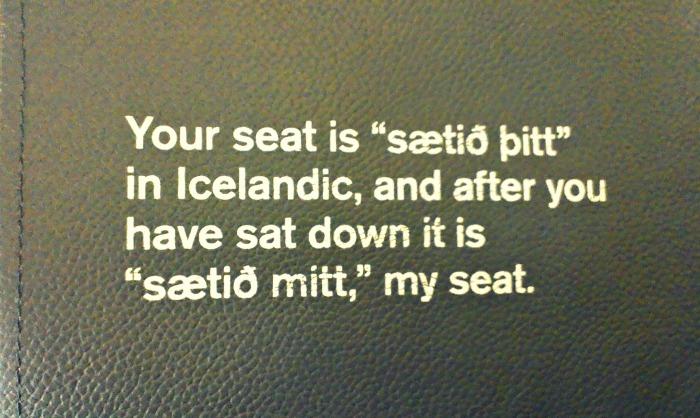 IcelandAirSeat3