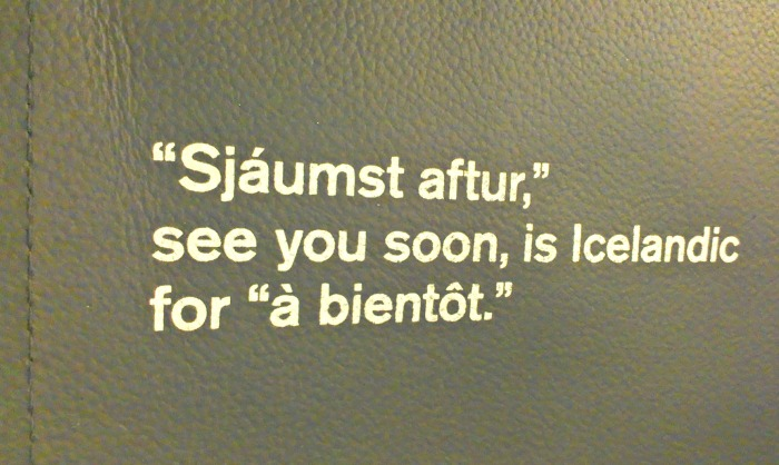 IcelandAirSeat6
