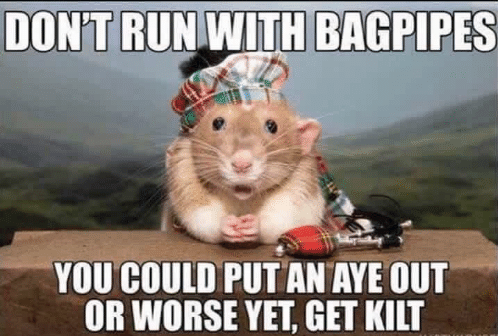 dont-run-with-bagpipes-you-could-put-an-aye-out-37306693